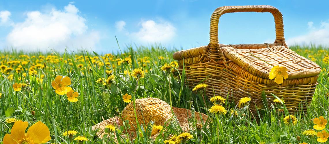 Nachdenken für Nachhaltigkeit - unser Beitrag zu weniger Umweltbelastung
